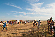 Fort Belknap Indian Reservation, Milk River Memorial Horse Races, Painted Horse Relay, Nolan Werk, Cody Fortin change horses