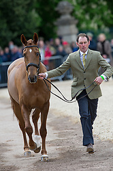 Murphy Joseph, (IRL), Electric Cruise<br /> First Horse Inspection - Mitsubishi Motors Badminton Horse Trials <br /> Badminton 2015