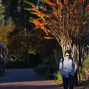 University of Florida-Student