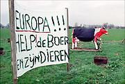 Nederland, Epe, 20-03-2001 Intensieve veehouderij, mond en klauwzeer.Noodkreet om het vee, de koeien, te vaccineren, in te enten, tegen mond en klauwzeer. MKZ. The Netherlands, 20-3-2001 The end. Container fot dead animals at a farm for pigs. Foot and mouth disease. Foto: Flip Franssen/Hollandse Hoogte
