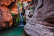 Elves Chasm is a true oasis in the desert with several waterfalls and hanging ferns. Grand Canyon National Park in Arizona.