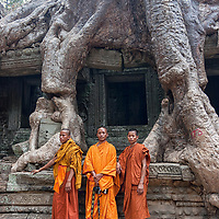 Monks posing near giant tree roots in Preah Khan. The damages on the khmer ruins caused by the growing force of heavy roots are unique on this part of the world. But no one can deny that this invading vegetation has its charm.