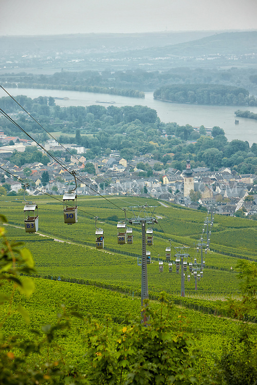 View of cable cars, vineyards, St. Jakobus Church, Market Square, and the Rhein, Rüdesheim, Germany (Vertical).