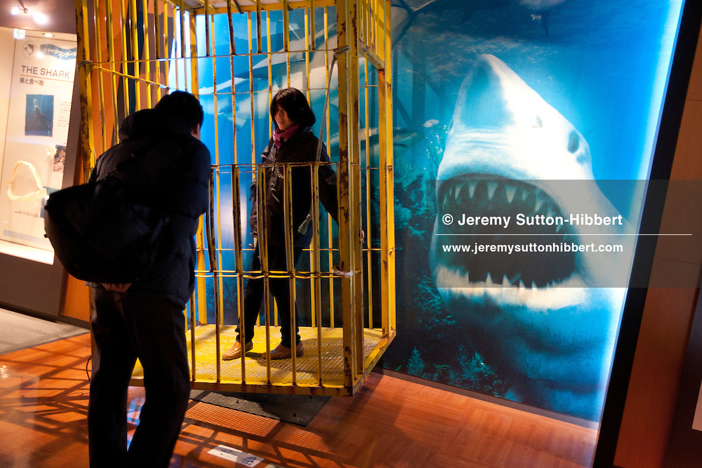 A tourist tries out an anti-shark diving cage at the Kesen-Numa Rias Shark Museum, in Kesennuma, Miyage-ken, Japan, on Thursday 13th January 2011. Kesennuma has long been an important fishing port in Japan, with an approximate 2000 crew still working the 130 or so fishing boats, largely involved in long line fishing for tuna and shark. The hearts of the sharks are used for sashimi delicacy in restaurants, and the shark fins used for 'shark fin soup' both within Japan but also in further afield Asian countries such as China.