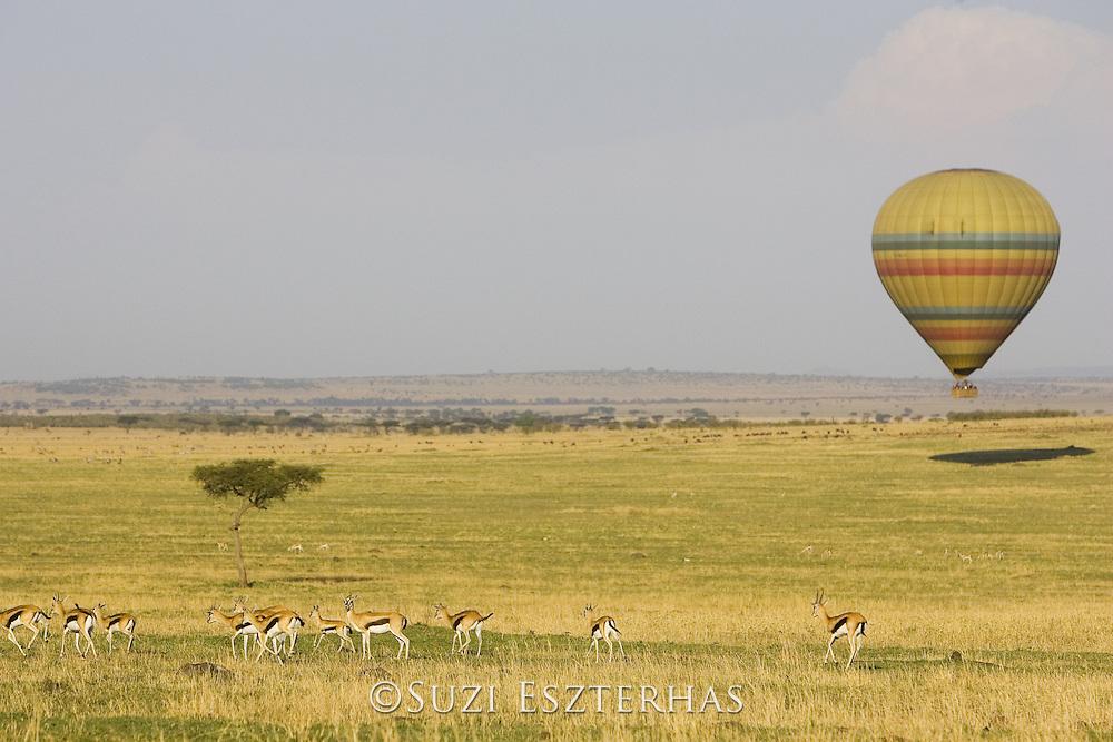 Hot Air Balloon over the Masai Mara<br /> Masai Mara Triangle, Kenya