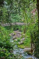 Jungle bridge across the river at Gunung Kawi, Gianyar Regency, Bali, Indonesia