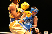 April 1, 2015 - New York, NY. Stacia Suttles lands a punch on Nisa Rodriguez. 04/01/2015 Photograph by Maya Dangerfield/NYCity Photo Wire