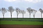 Frankrijk, Souchez, 11-5-2013Glooiend landschap met velden in het gebied van de slag aan de Somme in de eerste wereldoorlog.Foto: Flip Franssen/Hollandse Hoogte