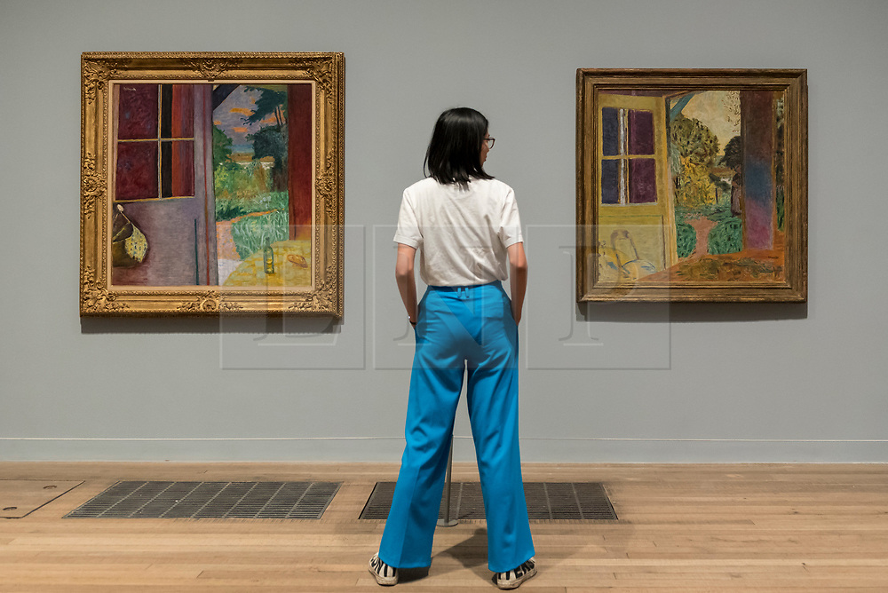 "© Licensed to London News Pictures. 21/01/2019. LONDON, UK. A staff member views ""The Open French Window, Vernon"", 1925, and ""The Door Opening onto the Garden"", 1924, both by Pierre Bonnard.  Preview of an exhibition called ""Pierre Bonnard: The Colour of Memory"" at Tate Modern.  This is the UK's first major Pierre Bonnard exhibition in 20 years bringing together around 100 of his works from around the world covering a period from 1912 to his death in 1947.  The works are on show 23 January to 6 May 2019.  Photo credit: Stephen Chung/LNP"