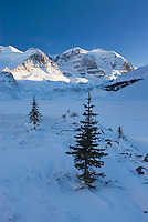 Mount Andromeda in winter seen from the glacial plain of the Sunwapta River, Jasper National Park Alberta Canada