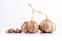 Garlic on white background - close-up
