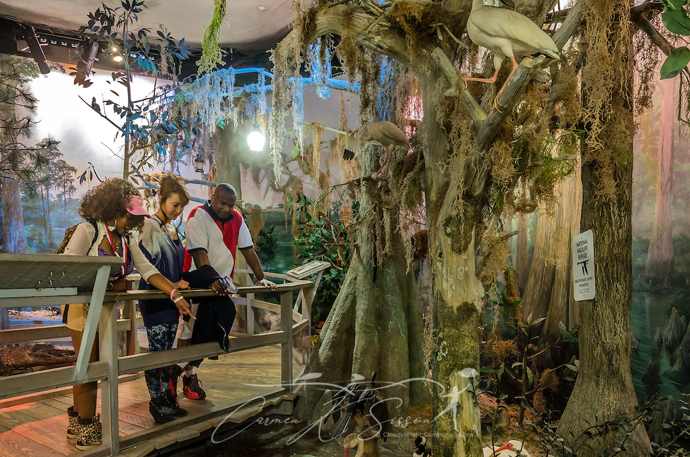 "A family explores a model of the Okefenokee Swamp in the ""A Walk Through Time in Georgia"" exhibit at Fernbank Museum of Natural History, May 23, 2014, in Atlanta, Georgia. From left are Toni Ingram, Hiromi Ingram, and Tyrone Ingram. The museum opened in 1992 and is known for its massive dinosaur exhibitions. The museum also has an IMAX theater and holds popular public events like monthly salsa dance nights and the weekly ""Martinis & IMAX"" program. (Photo by Carmen K. Sisson/Cloudybright)"
