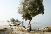 A girl walks under a tree cocooned in spider webs, after extreme flooding in Sindh, Pakistan, 2010