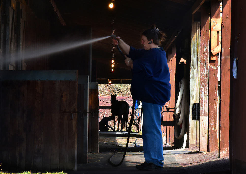 Sherry Saar washes the stables as George Benetos works on the hooves of Dashpedia 6, after qualifiers on Tuesday, the race season begins at 6:30 March 19th and races will be every Tuesday and Saturday through March. April will have races Sunday, Monday, Tuesday and Saturday.