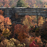 October 25, 2009 - Slade, Kentucky, USA - Visitors to Natural Bridge State Park walk across the sandstone formation to get a view of the fall foliage that was expected to be peaking this weekend. The arch is 78 feet in length, 65 feet high, 12 feet thick, and 20 feet wide. Some geologists believe that the natural sandstone arch, which has been drawing tourists since 1889, is at least a million years old. (Credit image: © David Stephenson)