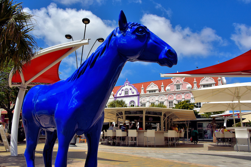 Blue Horse Sculpture in Oranjestad, Aruba<br /> You may discover all eight blue horse sculptures while exploring downtown. The outdoor art project began in 2015 as a Tribute to Paarden Baai. In English, this means Horses Bay. This was the city&rsquo;s original name in the 17th century when selling horses to Europeans became a major contributor to the economy.  However, by the end of the 18th century, this trade suffered a significant decline at the hands of the French and English.  Each horse represents a different strength.  This mare, by artist Osaira Muyale, is named Sinforosa. She is called the martyr of the herd.