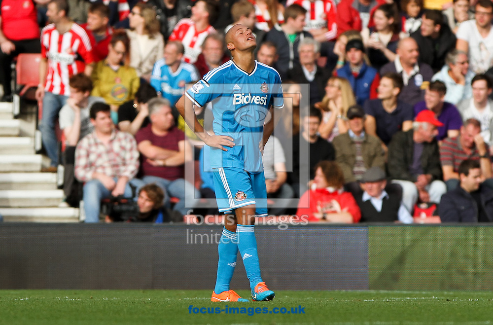 Wes Brown of Sunderland reacts to his side going 3-0 down during the Barclays Premier League match at the St Mary's Stadium, Southampton<br /> Picture by Tom Smith/Focus Images Ltd 07545141164<br /> 18/10/2014