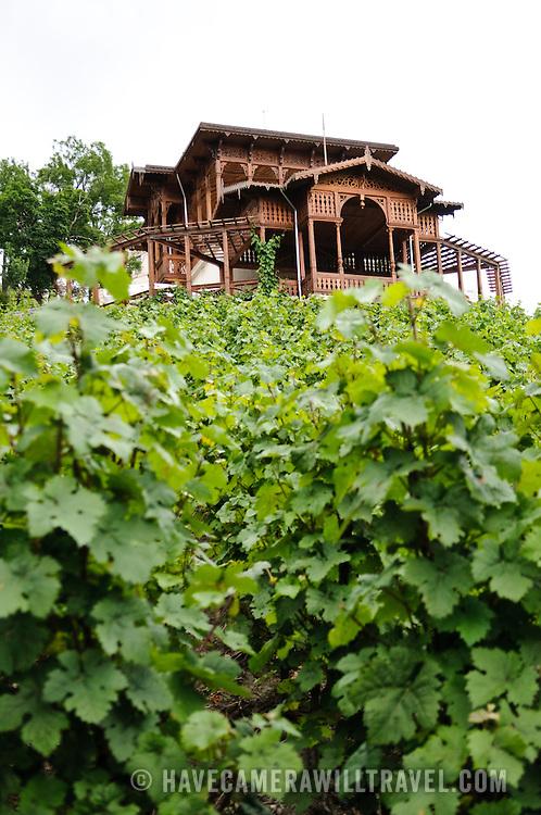 Vineyard at Havlickovy Sady in Prague