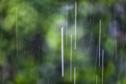 The Effect of Shutter Speed on Falling Rain Set 3-#2
