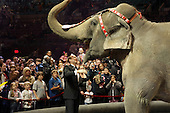 Ringling Brothers and Barnum & Bailey Circus Opening Nite at Madison Square Garden in NYC
