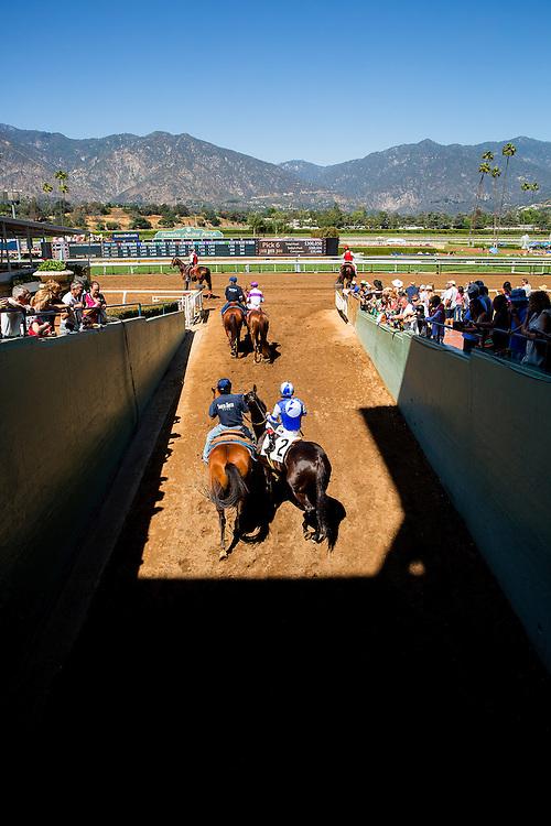 April 04 2015: Scenes from Santa Anita Park in Arcadia CA. Alex Evers/ESW/CSM