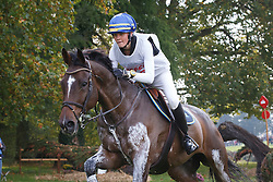 Stafverfeldt Elvira, (SWE), Golden Midnight<br /> Cross country<br /> Mondial du Lion - Le Lion d'Angers 2015<br /> © Dirk Caremans<br /> 17/10/15