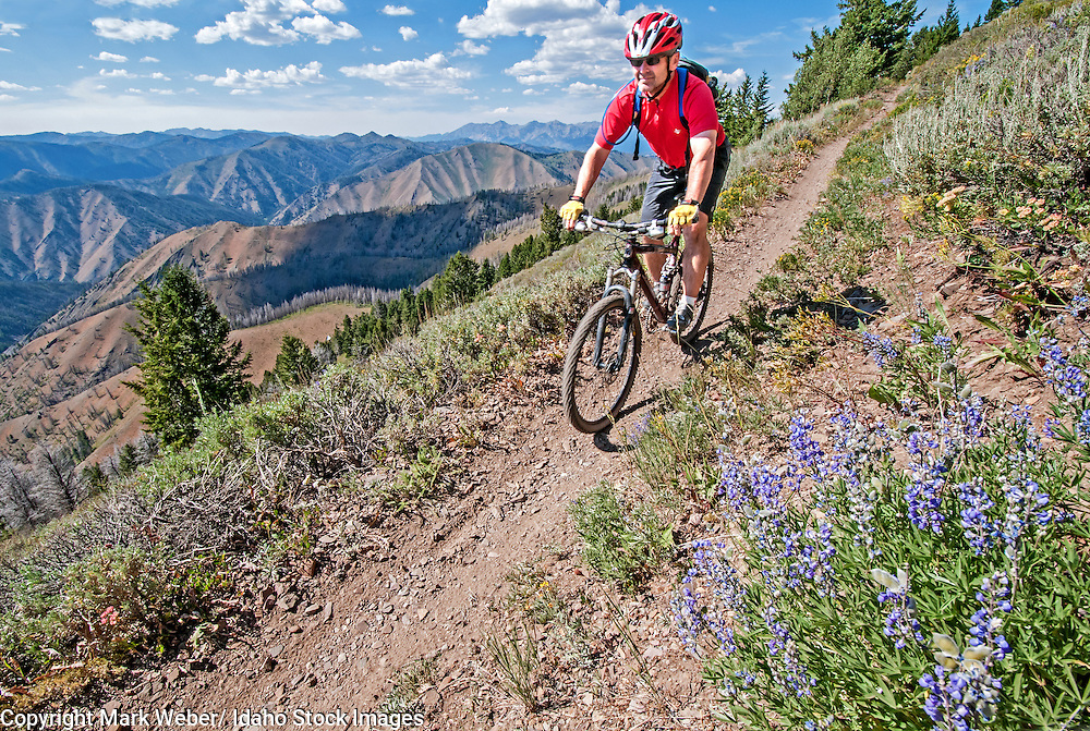 David Weber mountain biking the Broadway Saddle Trail on Bald Mountain at Sun Valley Resort near the cities of Ketchum and Sun Valley in central Idaho