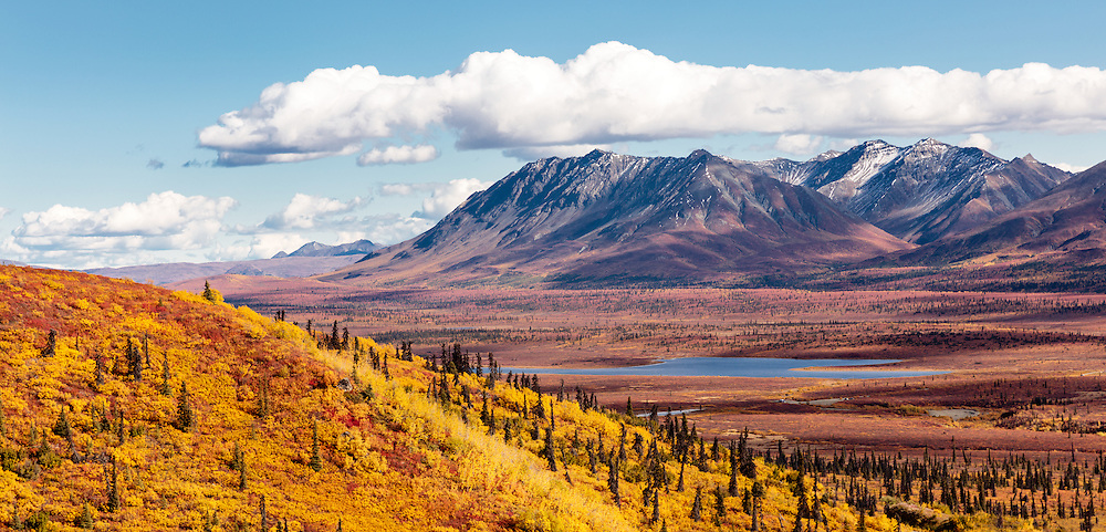 Peak fall colors along the expansive Matanuska Valley in Southcentral Alaska. Afternoon.