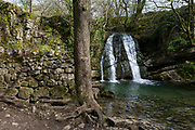 The natural pool and waterfall called Janet's Foss on 12th April 2017, in Malham, Yorkshire, England. Janet's Foss is a small waterfall in the vicinity of the village of Malham, North Yorkshire, England. It carries Gordale Beck over a limestone outcrop topped by tufa into a deep pool below. The pool was traditionally used for sheep dipping, an event which took on a carnival air and drew the village inhabitants for the social occasion. The name Janet (sometimes Jennet) is believed to refer to a fairy queen held to inhabit a cave at the rear of the fall. A foss is an old Norse word meaning waterfall.
