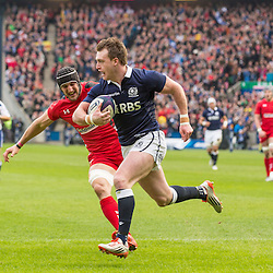 Scotland v Wales | Six nations | 15 February 2015
