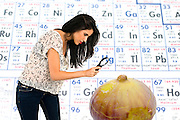 Woman with magnifying glass scrutinizes the face of a gigantic bio engineered fig