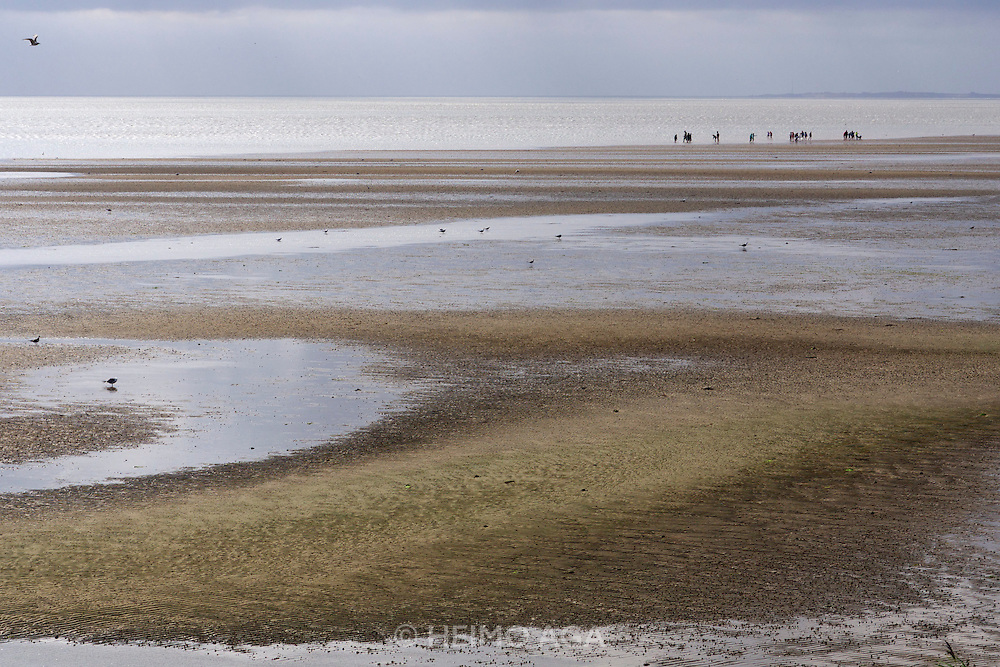 Sylt, Germany. List. Wattenmeer at low tide. Watt wanderers in a guided tour.