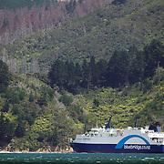 The Bluebridge ferry leaving Picton Harbour. Picton, New Zealand.  26th January 2011.Photo Tim Clayton..