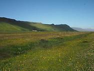 Verdant green landscape at last farm before Eyjafjallajökull glacier, Iceland, 2017.