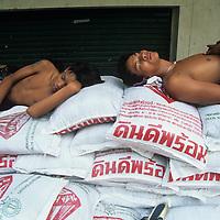 Thailand, Bangkok, Men sleep through hot afternoon outside rice warehouse