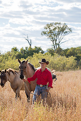 rugged All American cowboy with horses in a field