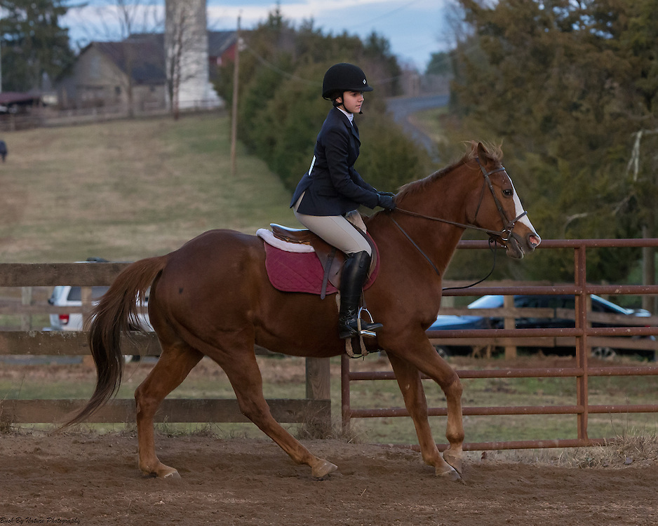 Image from the December 3, 2016 IEA show held at Century Manor Farm in Nokesville, VA