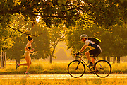 UNITED KINGDOM, London: 25 July 2019 <br /> A cyclist and a jogger cross paths in Richmond Park as the sun rises on what could be the hottest day ever recorded in Britain. Temperatures are set to reach up to 39 degrees Celsius later today.<br /> Rick Findler / Story Picture Agency