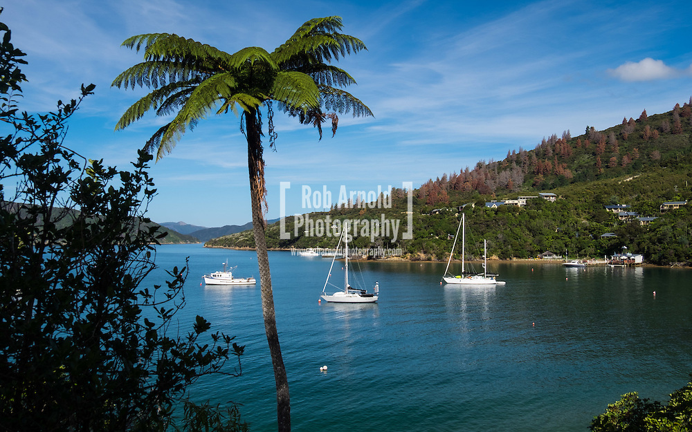 Boats moored in Camp Bay, near the Queen Charlotte Sound