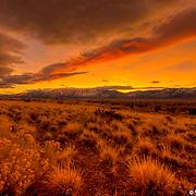 Sierra Wave Sunset