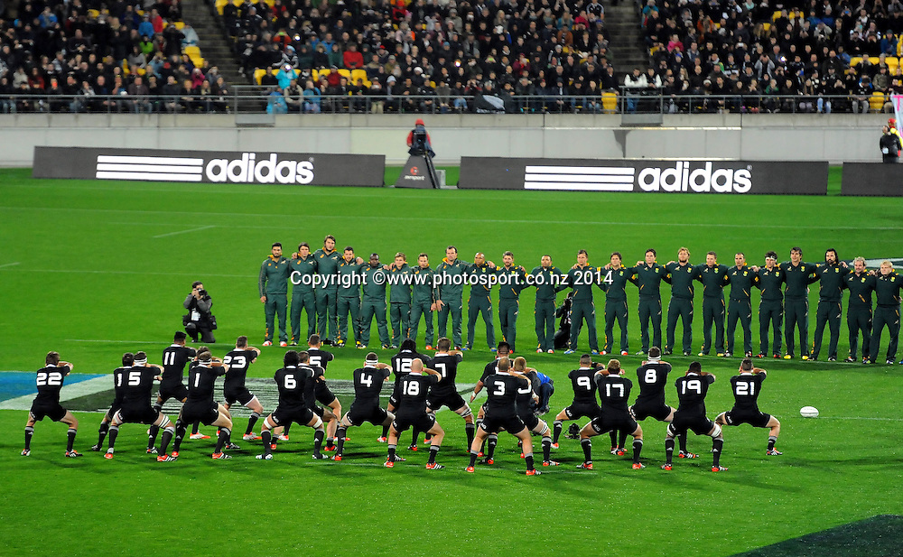 All Black perform the Haka during the Rugby Championship Rugby Union Test Match New Zealand All Blacks v South Africa. Westpac Stadium, Wellington, New Zealand. Saturday 13 September 2014. Photo: Chris Symes/www.photosport.co.nz