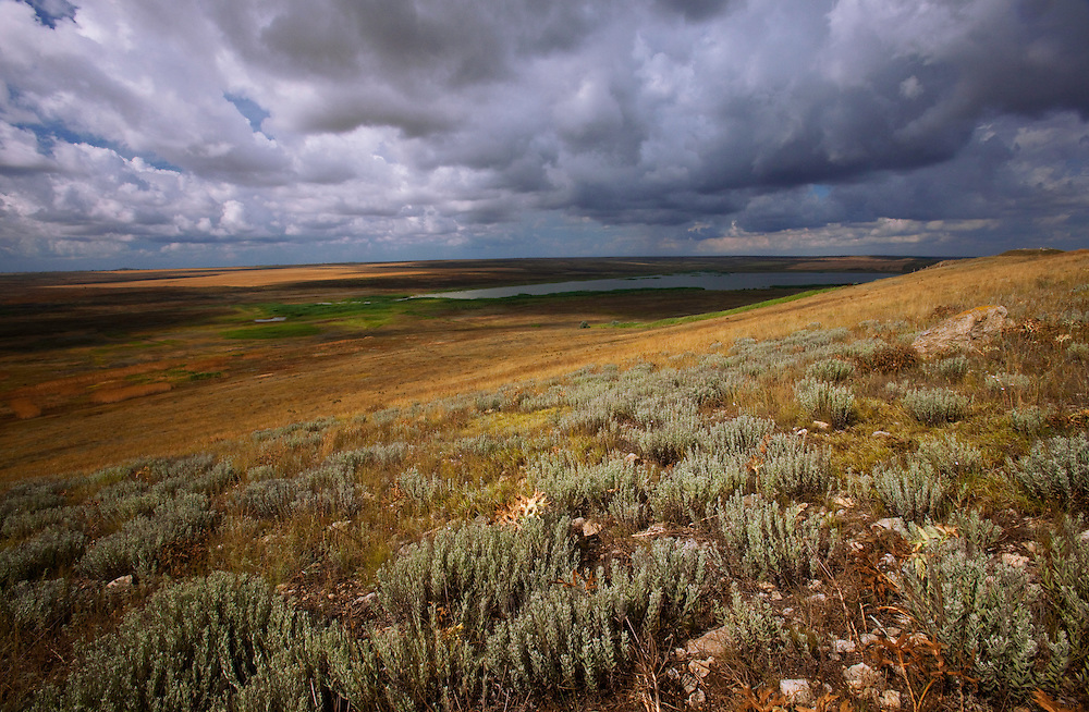 Steppe landscapes, Bagerova Steppe, Kerch Peninsula, Crimea, Ukraine