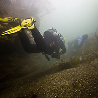 St.Abbs shore dive