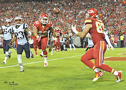 Sep 29, 2014; Kansas City, MO, USA; Kansas City Chiefs tight end Travis Kelce (87) catches a pass for a touchdown during the second half against the New England Patriots at Arrowhead Stadium. The Chiefs won 41-14. Mandatory Credit: Denny Medley-USA TODAY Sports