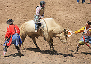 Bull Rider Sean Michael Case scores a 79 on 300 Marva Smith BH, 28 July 2007, Cheyenne Frontier Days