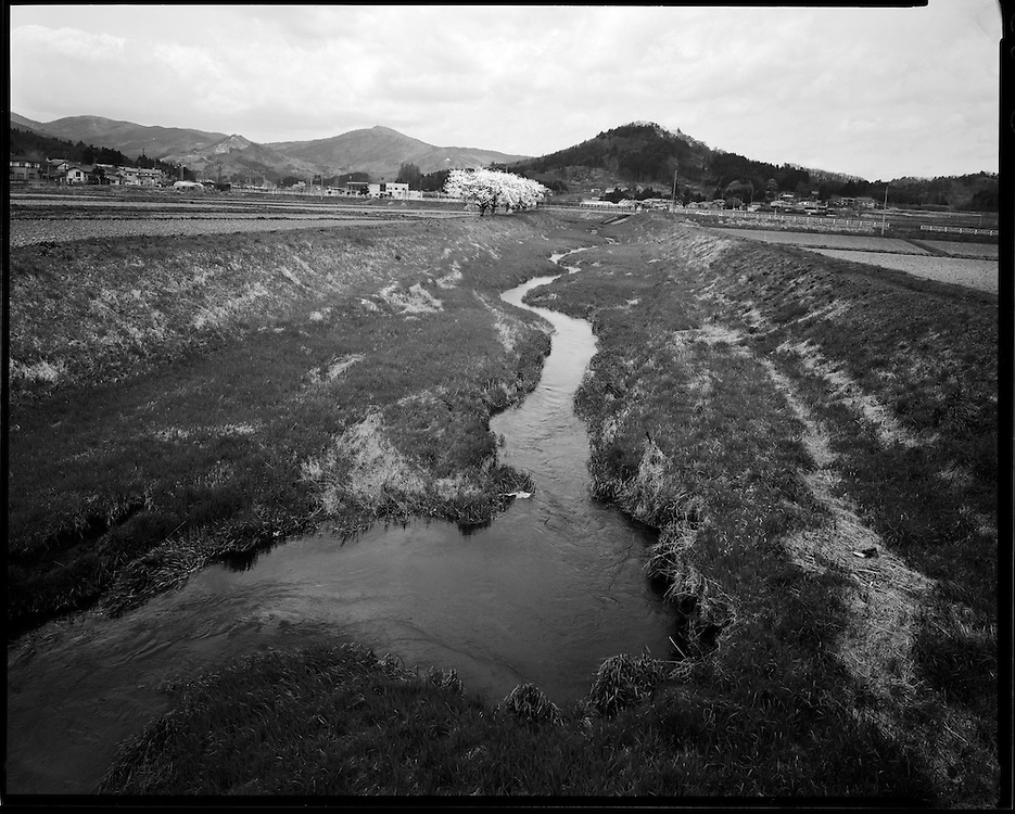 Fields lay fallow  due to radioactive  contamination from the  Fukushima Diachi Nuclear plant  40km away.   Heavy levels of  radioactive contamination   although well outside the  contaminated exclusion zone local topography  and weather has left extremely high levels of Radioactive deposits  causing the  Japanese Government to order the evacuation of towns people in this Idyllic farm village recently voted one of then most scenic towns in japan.