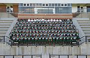 Stevenson University Mustangs 2012 Football Team Photo