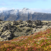 Taken in west-Iceland in Berserkjahraun late september.