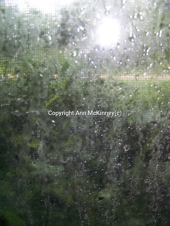 Sun through a Rainy Window