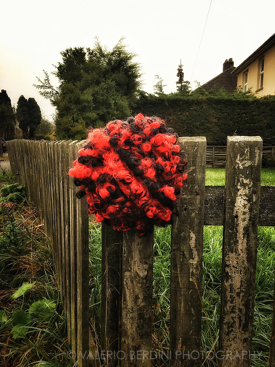Halloween leftover.<br />